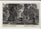 JERUSALEM - The Garden Of Gethsémane . OLD PC . ISRAEL , PALESTINE - Israel