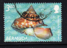 Bermuda Scott #851 Used $3 Bermuda Slit Shell - Bermudes