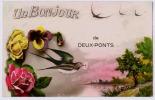 UN BONJOUR DE DEUX PONTS    ZWEIBRUECKEN - Zweibruecken