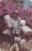 Basket Man , El Valle , Panama , 40-60s - Panama
