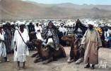 17250    Marocco,  Jour  De   Moussem,  NV - Marruecos