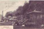 BRASSCHAET = Jardin Japonais  (1920) - Brasschaat