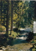Pk La Vologne:2150:Souvenir - Granges Sur Vologne