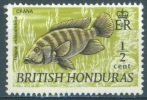 BRITISH HONDURAS - 1971 - MNH/** - TILAPIA - SG 277  Yv 265  Lot 3778 PERF 13 1/2 X 13 YELLOW - British Honduras (...-1970)