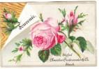Souvenir Almanach 1888 Calendrier Amidon Onderwater & Co Starch Stijfsel - Formato Piccolo : ...-1900