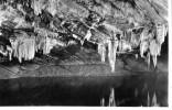 17381    Belgio,    Les  Grottes  De  Han-sur-Lesse,  Les  Draperies,  VG  1957 - Rochefort