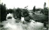 86 VIC-sur-GUARTEMPE La Guartempe Et Ses Iles En Amont Du Pont - France