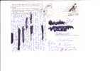 25/048        CP NORGE - Aigles & Rapaces Diurnes