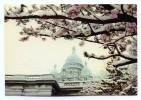 PARIS Neige D'avril Devant Le Sacré-Coeur - Sacré Coeur
