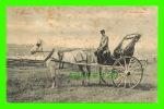 AGRICULTURE - ATTELAGES DE CHEVAL - CALÈCHE AVEC SON CHEVAL BLANC - CIRCULÉE EN 1907 - - Attelages