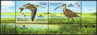 Belarus 2011 MNH 1 V Bird Of The Year Curlew Courlis Oiseau Birds Oiseaux Vogel - Uccelli