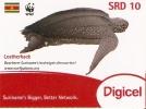 TARJETA DE SURINAME DE UNA TORTUGA MARINA SRD 10(TURTLE) WWF - Tartarughe