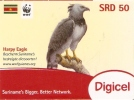 TARJETA DE SURINAME DE UN AGUILA HARPIA  (EAGLE) SRD 50(TURTLE) WWF - Aquile & Rapaci Diurni