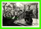 SINGE - LES ANIMAUX SUPÉRIEURS - ROBERT DOISNEAU - EDITIONS ADMIRA & ROBERT DOISNEAU EN 1987 - - Singes