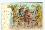 Br - ILLUSTRATEUR - SCHMIDT H. - SUISSE - RUEBLILAND - JEUX De CARTES - CAROTTE - Cartes à Jouer