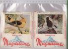 LOT DE 2 BUVARDS BISCITTES MAGDELEINE - Biscotti