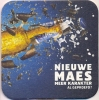 D53-014 Viltje Maes - Sous-bocks