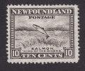 Newfoundland, Scott #193, Mint No Gum, Salmon Leaping Falls, Issued 1932 - Terre-Neuve