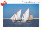 CPM Du BASSIN D´ ARCACHON (33) - Le Banc D' ARGUIN - Arcachon