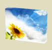 Canvas Art Print On Stretcher Bars, Still Life, Sunflower, Sky, Sun - Prints & Engravings