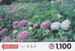 RARE Carte Prépayée Japon - FLEUR Fleurs - HORTENSIA - FLOWER  Japan Prepaid Card - Blume Karte  - Nishi 849 - Fleurs