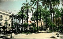 Espagne - Andalucia - Cadiz - Plaza Castelar - Semi Moderne Petit Format - état - Cádiz