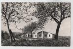 67 OBERNAI  - VILLAGE DE VACANCES - PHOTO HOMMER -  (scan Recto Verso) - Obernai