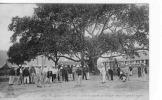 AS02-8- VIET-NAM - NUI DEO - Soldats Jouant  Au Croquet Sous Le Grand Banian - Vietnam