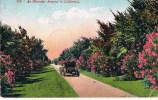272 An Oleander Avenue In California - Sin Clasificación