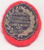 ESCUDO ORIGINAL BATALLA DE CUCHA CUCHA - 22 DE FEBRERO DE 1814 - Tokens & Medals