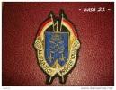 1973 - ( 73/02 ) - Ecusson Du 1er Rt De Dragons De Lure - - Patches