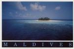 Maldives, Coral Circle - Maldives