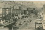 CPA 75- PARIS-La Sorbonne-Salle Des Collections D'anatomie Comparée-- - Unclassified