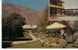 Carte Postale, Californie, Palm Spring, Annie And Dave Margolis', Pepper Tree Inn - Palm Springs