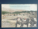 ADANA ( Cilicie), Caravane Dans Les Montagnes Taurus. - Turchia