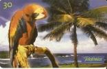 TARJETA DE BRASIL DE UN  GUACAMAYO (PARROT) - Parrots