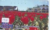 Télécarte Japon FLEUR * TULIPE (137) TULIP * TULP * TULPE * Flower * Phonecard Japan * TELEFONKARTE  BLUMEN - Bloemen
