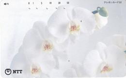 JAPAN - Flowers(111-079), Used - Japan