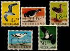 Pays Bas (1961) N 733 à 737 Luxe (Oiseaux)