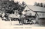 Papouasie-Nouvelle-Guiné E  - Waïma - A La Station De Waïma - Papouasie-Nouvelle-Guinée