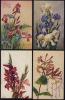 LOT DE 4 CPA FLEURS IRIS GLAIEULS CHEVREFEUILLE - Flowers, Plants & Trees