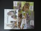 Set Of 4 Maxi Cards 2011 Taiwan Owls Stamps Fauna Owl Nice Cachet