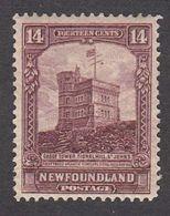 Newfoundland 1928  14c    SG174a  MH - 1908-1947