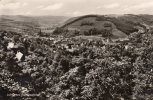 18635    Germania,   Luftkurort  Gemund/Eifel,  VGSB 1966 - Germania