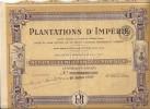 PLANTATION D'IMPERIE . AOF - Afrique
