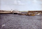 Quiberon : Entrée De Port-Marie - Quiberon