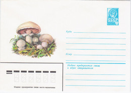 USSR 1980 Flora Mushroom Mushrooms Plants Snail Fungus - Champignons