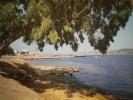 CARTOLINA:GOLFO DI  ARZACHENA - CANNIGIONE     1964     VIAGGIATA - Olbia