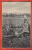 J172 Femmes Et Chargement De Pommes De Terre,ANIME. Non Circulé. N.K.G. 1802 - Cultivation