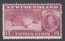 Newfoundland 1937 Die I Add. Coronation 48c  SG 267   MNH - 1908-1947